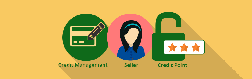 Marketplace Seller Credit Management For Magento2