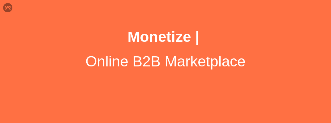 How To Monetize an online B2B Marketplace?